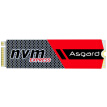Asgard AN Series 1TB M.2 Interface (NVMe Protocol) SSD Solid State Drive