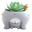Micro Natural Resin Flower Pot Nverted Animal Design Meat Plant Flower Pot Garden Home Office Deco