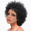 Womens Natural Short Kinky Curly Hair Wigs Black Afro Fluffy Wavy Wig Costume
