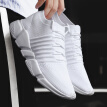 Summer and autumn new Hong Kong style canvas shoes men's Korean version of the trend of wild white socks shoes social men's shoes