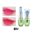 Natural Moisture Aloe Vera Gel Lipstick Makeup Waterproof Nutritious Transparent Lipstick Temperature Color Changing