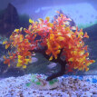 Aquarium Artificial Bent Tree Fish Tank Underwater Landscape Plants Ornament