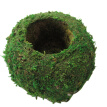 Natural Moss Flower Pot Ball Creative DIY Garden Green Artificial Potted Plants Home Micro-landscape Personality Flower Pot