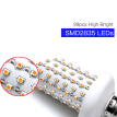 Tomshine LED Fire Effect Light Bulb E26 Base Always Bright/Flame Flickering Mode SMD2835 Decorative Atmosphere Lamp for Party Holi
