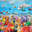Custom Mural Wallpaper Underwater World Colorful Coral Wall Decorations Living Room Sofa TV Background Photo Wallpaper 3D Custom