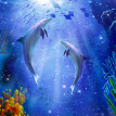 Custom Photo Wallpaper 3D Dolphin Underwater World Living Room Entrance Hallway Bedroom Background Mural Wallpaper De Parede 3D