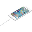 SKW APP-001 Apple MFi certification data line iphoneX/8/7/6s plus/ipad/pro/mini charging USB cable charging treasure mobile phone accessories power cord 0.5 meters