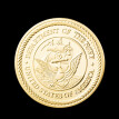 US navy coin gold plated pirate ship coin
