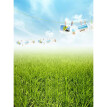 Green Meadow Photo Backdrop 5*7FT Vinyl Fabric Cloth Digital Printing Photo  Background s-650