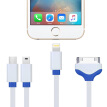 Capshi 4-in-1 Micro USB, Mini USB, Lightning 8 pin, Apple 30 pin charging cable