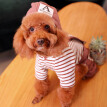 Huayuan favors (hoopet) pet dog clothes Teddy Bomei small and medium-sized dogs autumn and winter wear witch hooded straps M