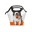 Lunch Bag Tote Bag Orange Dog Travel Picnic Organizer Lunch Holder Handbags Lunch Bag Box for Office