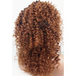 N.L.W. 10A Malaysian virgin human hair Lace front wigs Curly Glueless wigs with baby hair for black women