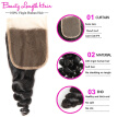 Brazilian Loose Wave Virgin Hair With Lace Closure 4 Bundles With Closure Human Hair With Closure