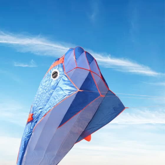 Huge Outdoor Fun Sports Single Line Software Dolphin Kite Animal Kites Flying