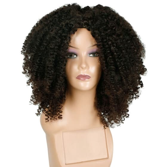 TOYFUNNY Brown Synthetic Curly Wigs for Women Short Afro Wig African American Natural