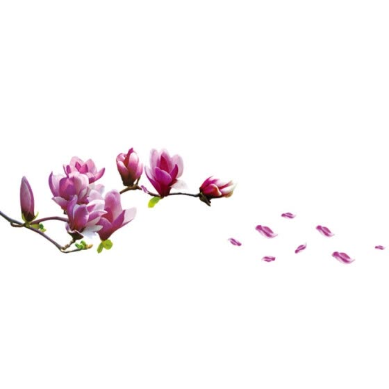 Fresh Magnolia Flower Wall Sticker Decal Removable PVC Wall Sticker Home Decor