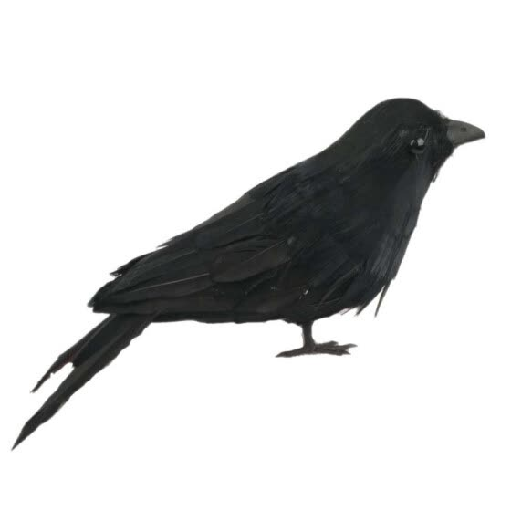 Stuffed Feathered Black Raven Crow Bird Decoration Fancy Dress Halloween