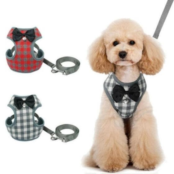 Mesh Breathable Dog Adjustable Rope String Harness Leads Pet Puppy Leash Cotton Vest