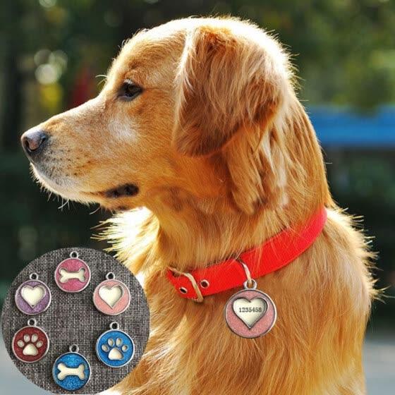 Dog Tag Pet Collar Accessories