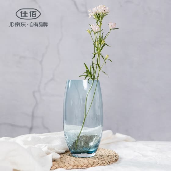 Shop Jia Hao Jia Yi Creative Ice Crack Vase Glass Personality Living