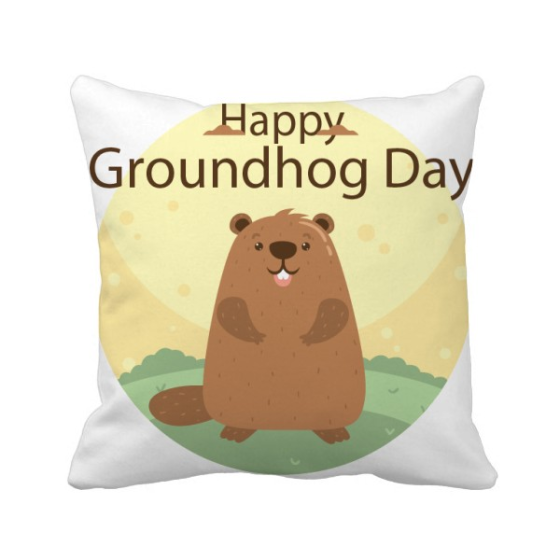 US and Canada Groundhog Day February Square Throw Pillow Insert Cushion Cover Home Sofa Decor Gift