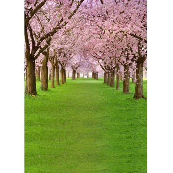 Pink Blossom Green Spring Photo Backdrop 5*7FT Vinyl Fabric Cloth Digital Printing Photo  Background s-597