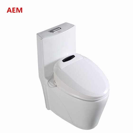 Remarkable Shop Smart Heated Toilet Seat Intelligent Bidet Toilet Seats Andrewgaddart Wooden Chair Designs For Living Room Andrewgaddartcom