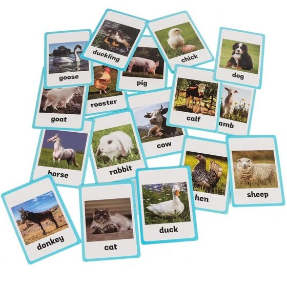 18 pc-Farm Animals Flash Cards-English word learning card&pocket size flash card for Preschool children-English Vocabulary Cards