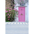 Pink Courtyard Door Photo Background 5*7FT Vinyl Fabric Cloth Digital Printing Wedding Backdrop S-3068