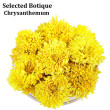 50pc Flowers Organic Giant Golden Chrysanthemum Tea Dried Health Chinese Tea