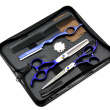 "HT9119 HUNTERrapoo 6"" Barber Scissors Set Stainless steel Hair Cutting and Thinning shears"