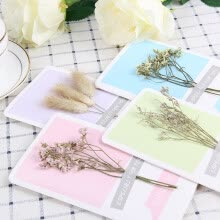 -JDKJ Creative Dried Flower Birthday Card Postcard Blessing Card Valentine's Day Gift*1 Random Style on JD