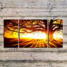 -3 Pcs( No Frame) Golden sunshine tree HD home decor wall art stickers Top-rated canvas print painting for living room decoration on JD