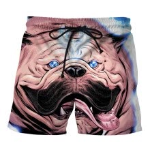 shorts-Swimming trunks Summer New Product Personality Shar Pei 3D Printing Beach pants Loose casual Large yard pants on JD