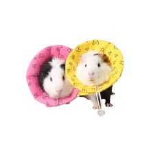 birds-fishes-other-small-animals-and-horses-Small Animal Health Supply Hamster Cute Medical Collar Prevent Biting on JD
