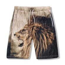 875068681-Men's sports trousers, European and American eyes speed dry men's trousers, 3D printed lion head shorts on JD